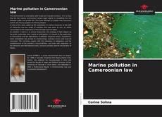 Marine pollution in Cameroonian law的封面