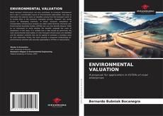 Buchcover von ENVIRONMENTAL VALUATION