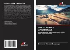 VALUTAZIONE AMBIENTALE的封面