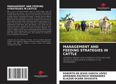 Couverture de MANAGEMENT AND FEEDING STRATEGIES IN CATTLE