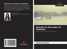 Bookcover of Journey to the heart of madness