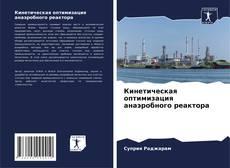 Кинетическая оптимизация анаэробного реактора kitap kapağı