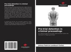 Bookcover of Pre-trial detention in criminal proceedings