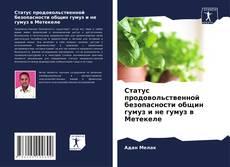 Buchcover von Статус продовольственной безопасности общин гумуз и не гумуз в Метекеле