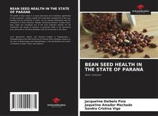 Bookcover of BEAN SEED HEALTH IN THE STATE OF PARANÁ
