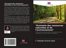 """Copertina di """"Économie des ressources naturelles et de l'environnement"""""""