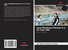 Bookcover of Love Breakup Process in a 23 Year Old