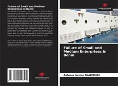 Borítókép a  Failure of Small and Medium Enterprises in Benin - hoz
