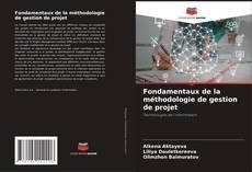 Borítókép a  Fondamentaux de la méthodologie de gestion de projet - hoz