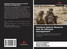 Bookcover of Itombwe Nature Reserve and its efficient management