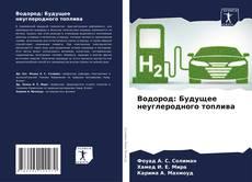 Borítókép a  Водород: Будущее неуглеродного топлива - hoz