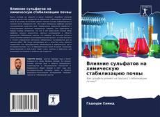 Обложка Влияние сульфатов на химическую стабилизацию почвы