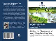 Bookcover of Einfluss von Pflanzgeometrie und Stickstoffgehalt auf Reis