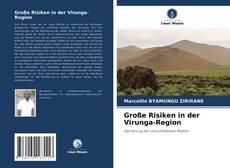 Bookcover of Große Risiken in der Virunga-Region