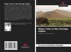 Bookcover of Major risks in the Virunga region