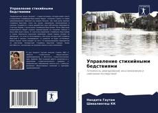 Bookcover of Управление стихийными бедствиями