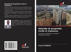 Bookcover of Aziende di proprietà civile in Camerun