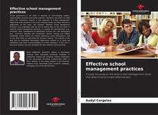 Bookcover of Effective school management practices