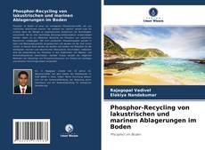 Portada del libro de Phosphor-Recycling von lakustrischen und marinen Ablagerungen im Boden