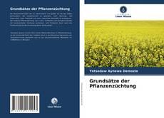 Grundsätze der Pflanzenzüchtung的封面