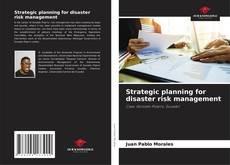 Bookcover of Strategic planning for disaster risk management