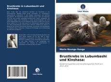 Capa do livro de Brustkrebs in Lubumbashi und Kinshasa: