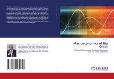 Macroeconomics of Big Crises的封面