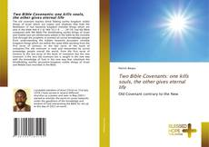 Buchcover von Two Bible Covenants: one kills souls, the other gives eternal life