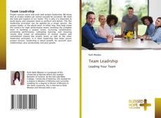 Bookcover of Team Leadrship