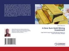 A Zero Sum Gold Mining Investment的封面