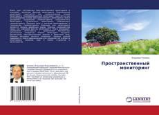 Buchcover von Пространственный мониторинг