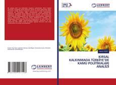 KIRSAL KALKINMADA TÜRKİYE'DE KAMU POLİTİKALARI ANALİZİ kitap kapağı