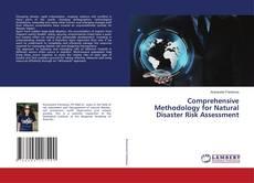 Copertina di Comprehensive Methodology for Natural Disaster Risk Assessment