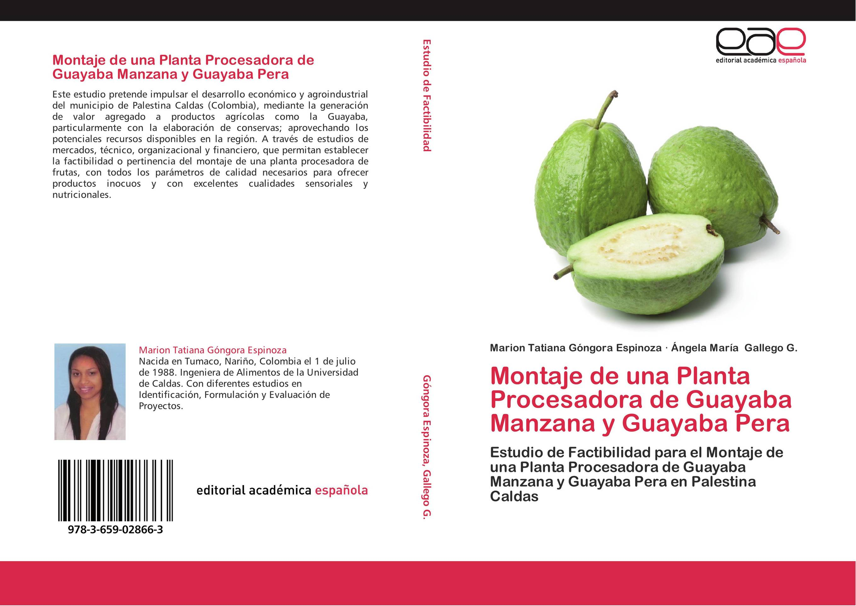 Montaje de una Planta Procesadora de Guayaba Manzana y Guayaba Pera ...