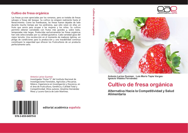 Cultivo de fresa orgánica