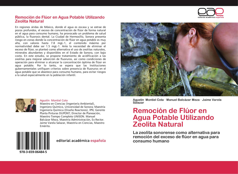 Remoción de Flúor en Agua Potable Utilizando Zeolita Natural ...
