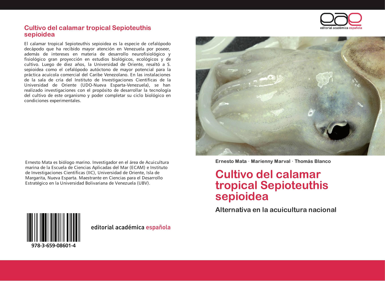 Cultivo del calamar tropical Sepioteuthis sepioidea :: Librería ...