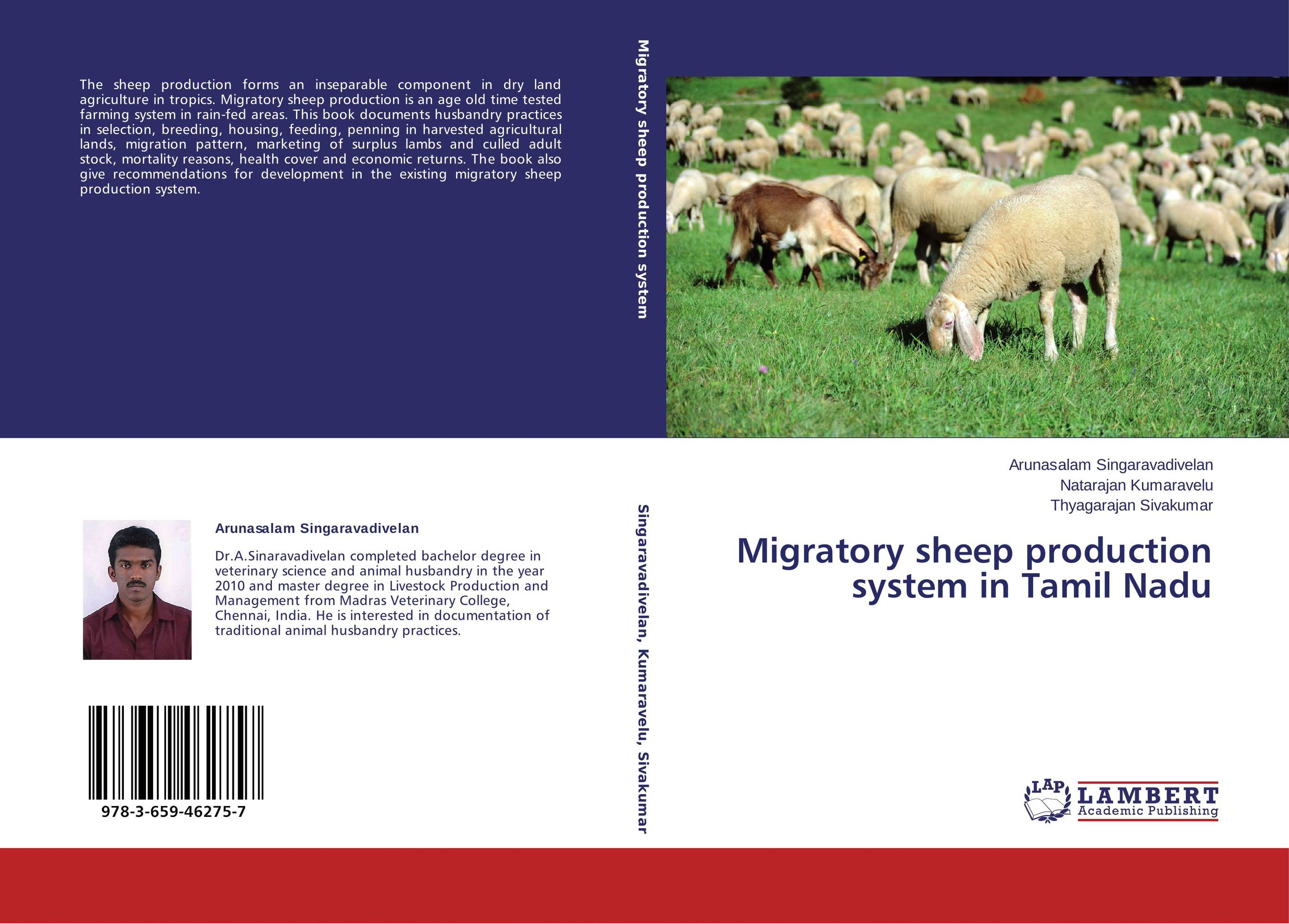 modified sheep to produce aat Growth performance, reproductive traits and offspring survivability of genetically modified rams overexpressing toll-like receptor 4.