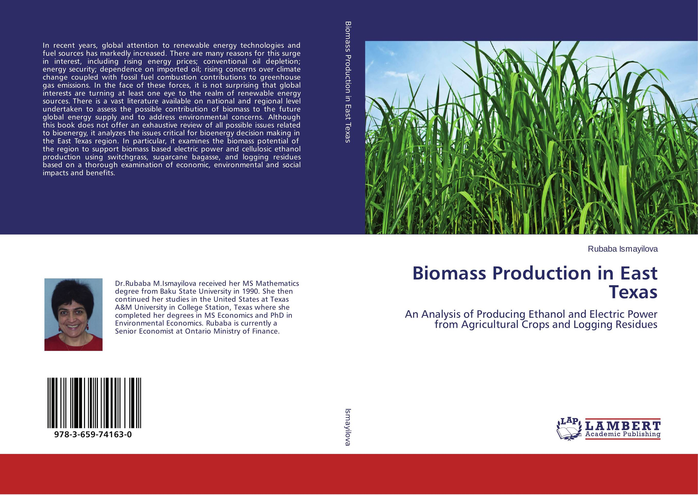 an analysis of ethanol Net energy analysis of ethanol production wm a scheller and brian j mohr department of chemical engineering, university of.