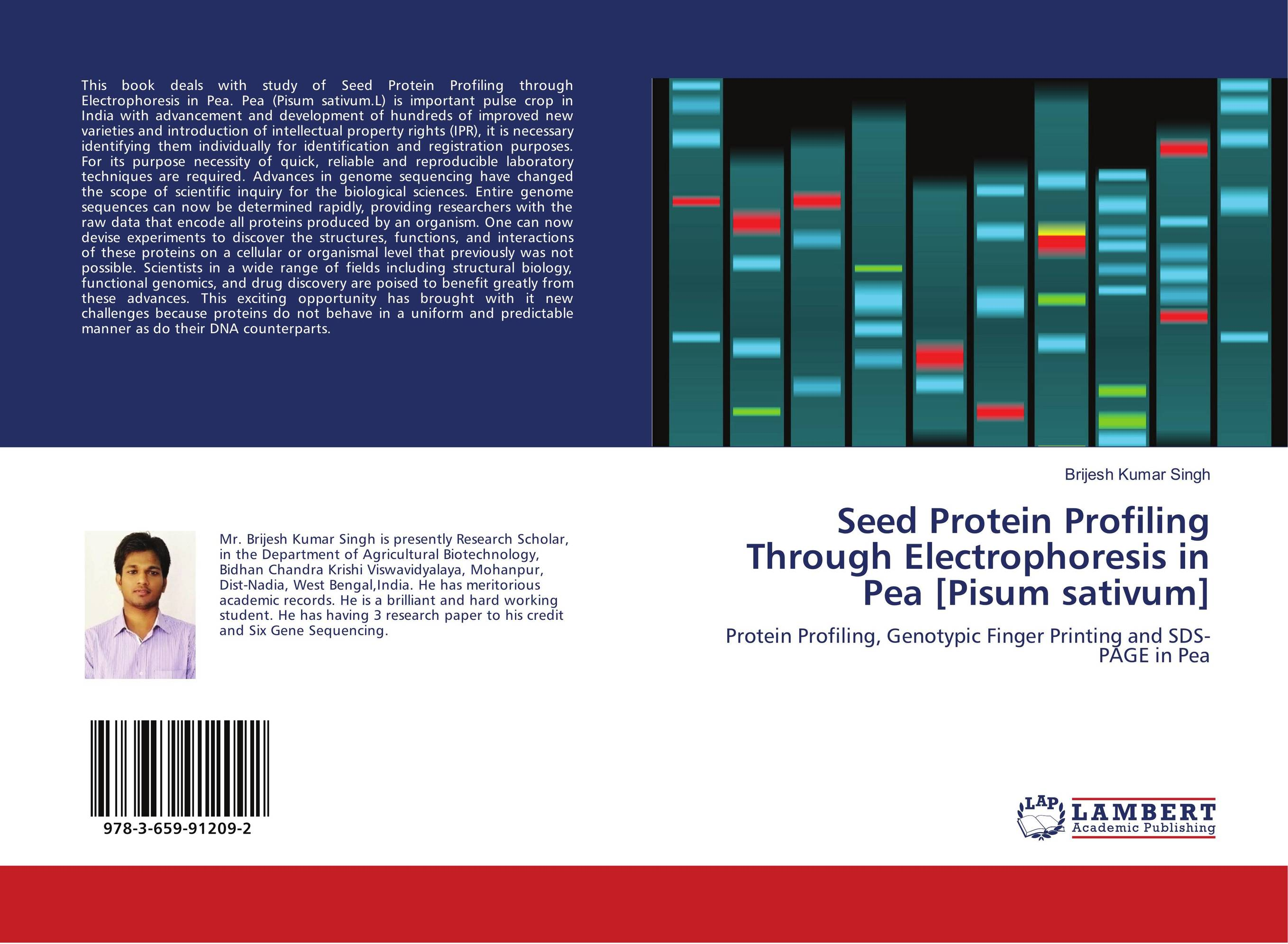 sds page electrophoresis of proteins essay Experiment no 15 protein characterization by electrophoresis abstract the molecular weights of protein extracts were assessed by sodium dodecyl sulfate-polyacrylamide gel electrophoresis (sds-page).