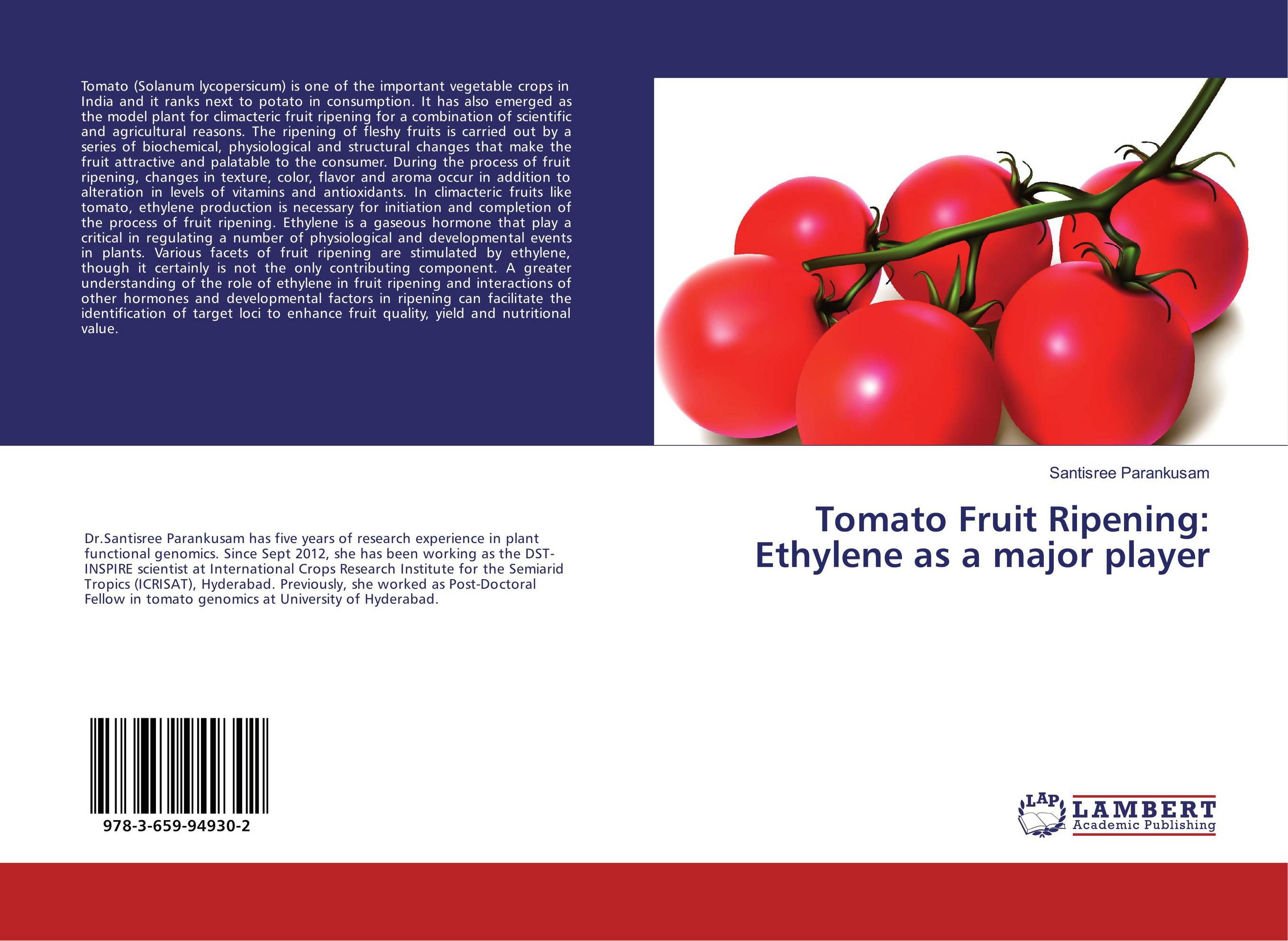 production of bioethanol from tomato solanum Experienced and reliable bioethanol production is on the increase around the world - and as the no 1 provider of environmental technologies, we can offer an integrated spectrum of solutions that is perfectly tailored to all areas of bioethanol production.