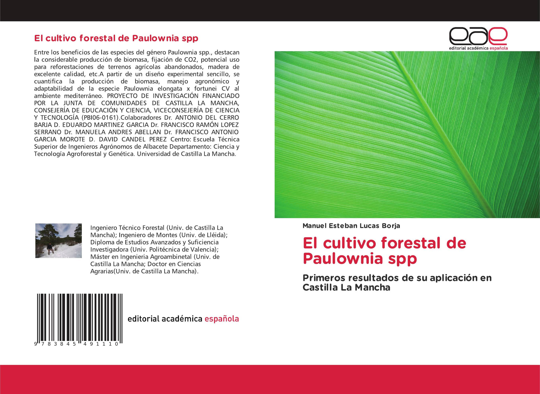 El cultivo forestal de Paulownia spp