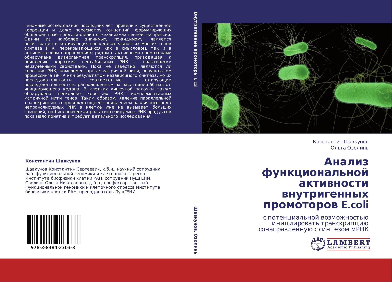 Анализ функциональной активности внутригенных промоторов E.coli. С потенциальной возможностью инициировать транскрипцию сонаправленную с синтезом мРНК.